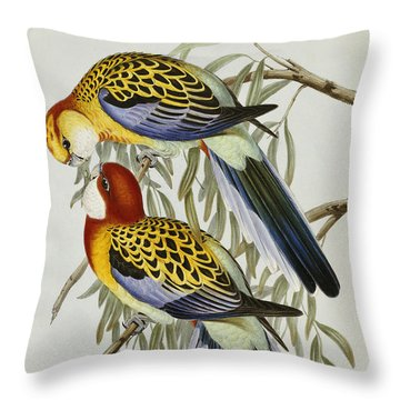 Eastern Rosella Throw Pillow by John Gould