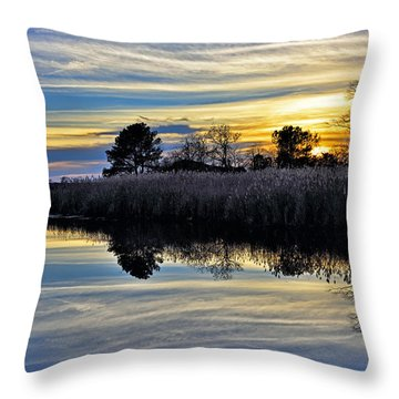 Throw Pillow featuring the photograph Eastern Shore Sunset - Blackwater National Wildlife Refuge - Maryland by Brendan Reals