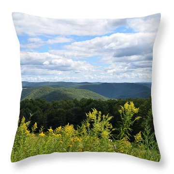 Eastern Summit 1 Throw Pillow
