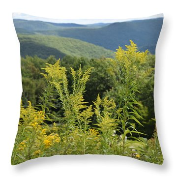 Eastern Summit 3 Throw Pillow