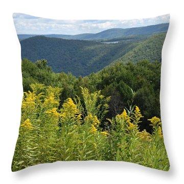 Eastern Summit 4 Throw Pillow