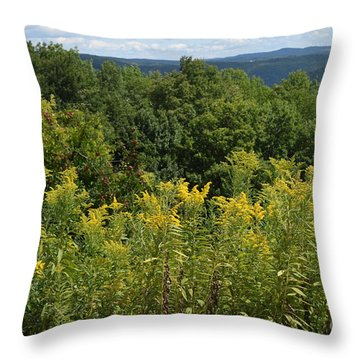 Eastern Summit 5 Throw Pillow