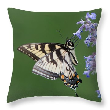 Eastern Tiger Swallowtail Profile Throw Pillow by Patti Deters