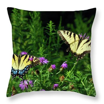 Throw Pillow featuring the photograph Eastern Tiger Swallowtail Butterfly - Female And Male  by Kerri Farley