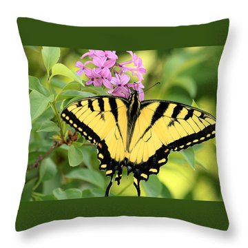 Eastern Tiger Swallowtail Butterfly Throw Pillow by Sheila Brown