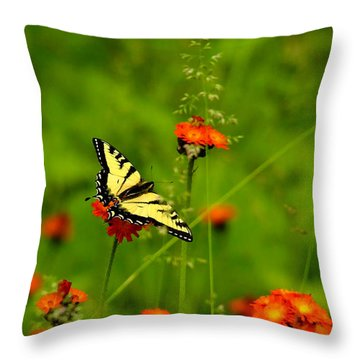 Eastern Tiger Swallowtail  Throw Pillow by Debbie Oppermann