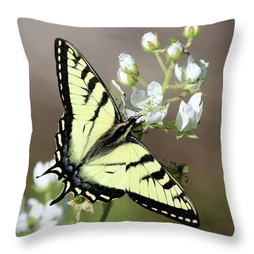 Eastern Tiger Swallowtail Female Throw Pillow
