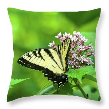 Throw Pillow featuring the photograph Eastern Tigerswallowtail On Milkweed by Lara Ellis
