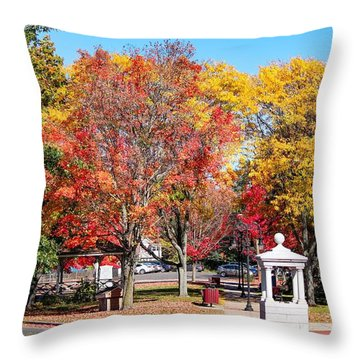Easthampton Center In The Fall Throw Pillow