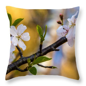 Easy Elegance Throw Pillow