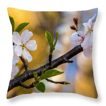 Easy Elegance Throw Pillow