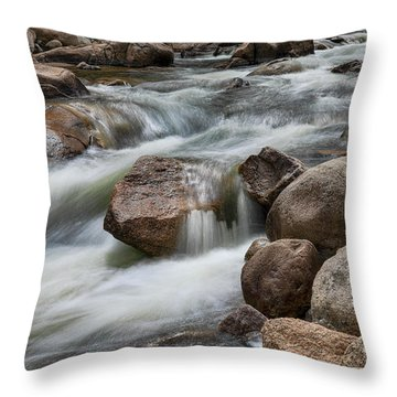 Easy Flowing Throw Pillow by James BO Insogna