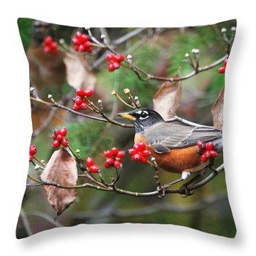 Easy Pickings Robin Throw Pillow