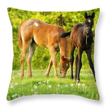 Easy Pickins Throw Pillow