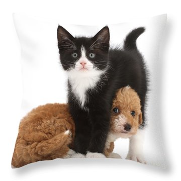 Easy To See Which One Of Us Is The Boss Throw Pillow