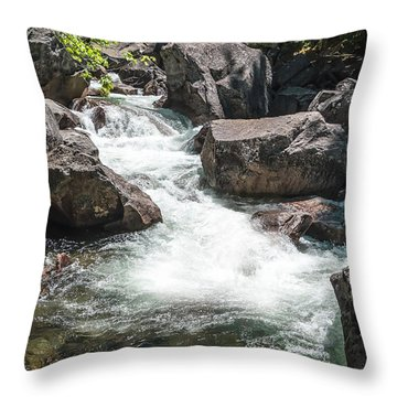 Easy Waters- Throw Pillow