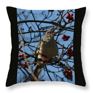 Throw Pillow featuring the photograph Eating Berries by Cathy Harper