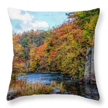 Eau Claire Dells Fall 2 Throw Pillow