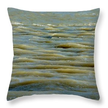 Throw Pillow featuring the photograph Eaux Vertes by Marc Philippe Joly