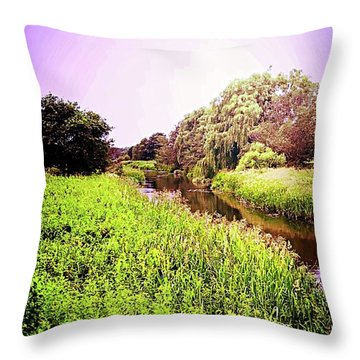 EB Throw Pillow