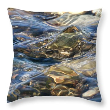 Ebbing Tide 1 Throw Pillow