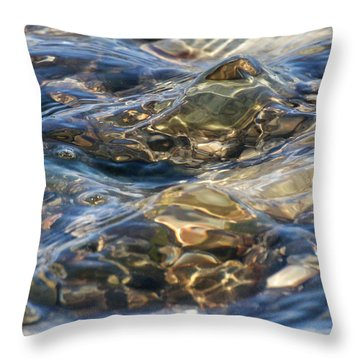 Throw Pillow featuring the photograph Ebbing Tide 1 by William Selander