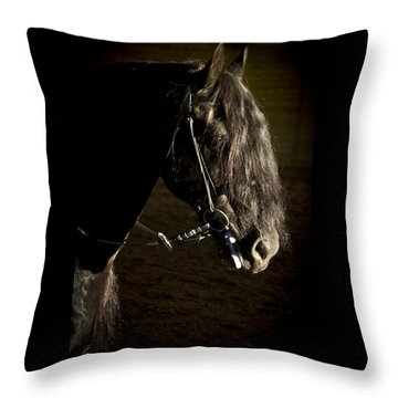 Throw Pillow featuring the photograph Ebony Beauty D6951 by Wes and Dotty Weber