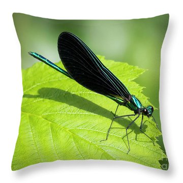 Ebony Jewelwing Throw Pillow