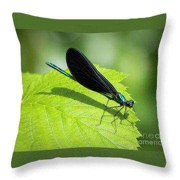 Throw Pillow featuring the photograph Ebony Jewelwing by Ricky L Jones