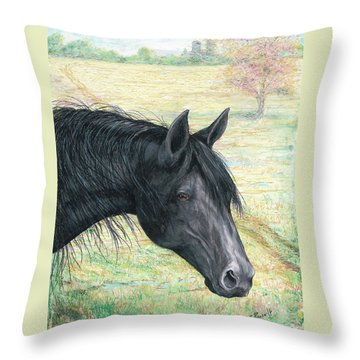 Ebony Throw Pillow
