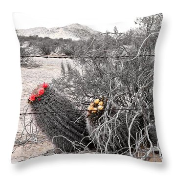 Ebullience Throw Pillow
