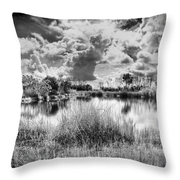 Everglades Lake 5678bw Throw Pillow