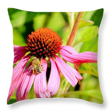 Echinacea Bee Throw Pillow