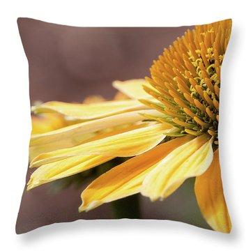 Echinacea, Cheyenne Spirit - Throw Pillow