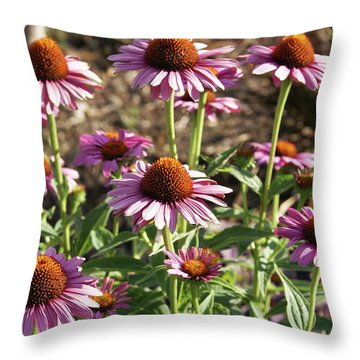Throw Pillow featuring the photograph Echinacea by Cynthia Powell