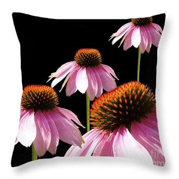 Echinacea In Half  Throw Pillow by Cathy  Beharriell