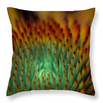 Echinacea Macro Throw Pillow