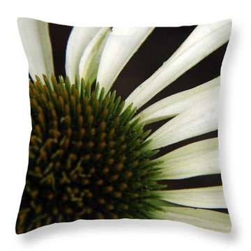 Echinacea Throw Pillow by Priscilla Richardson