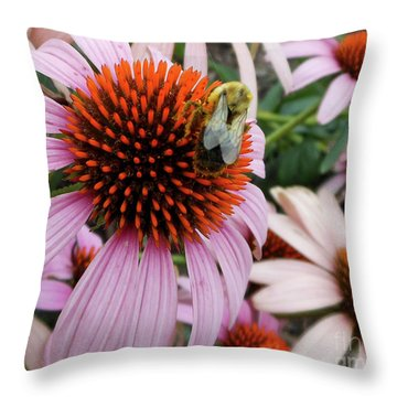Echinacea Tea Time For Bee Throw Pillow