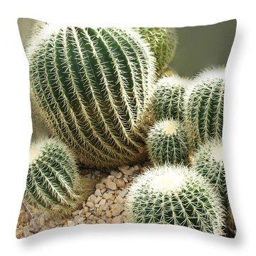 Echinocactus Grusonii  Throw Pillow
