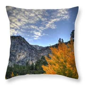 Echo Road Aspen Throw Pillow