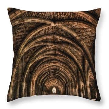 Echoes From Ancient Dreams Throw Pillow by Evelina Kremsdorf