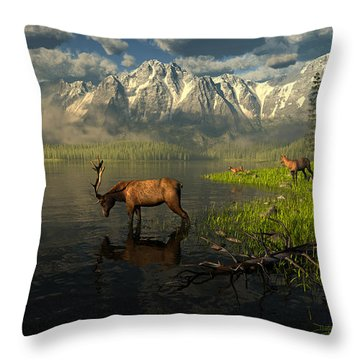 Echoes Of A Lost Frontier Throw Pillow