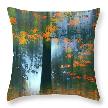 Throw Pillow featuring the photograph Echoes Of Autumn by Jessica Jenney