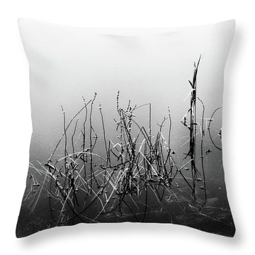 Echoes Of Reeds 3 Throw Pillow