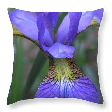 Ec Iris Throw Pillow