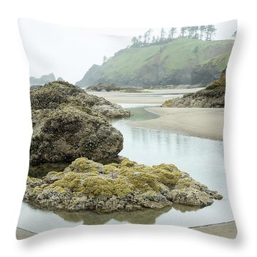Throw Pillow featuring the photograph Ecola Tidepool by Tim Newton