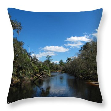 Throw Pillow featuring the photograph Econlockhatchee River by Barbara Bowen