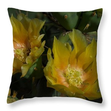 Throw Pillow featuring the photograph Eddie's Dream by Joseph Yarbrough