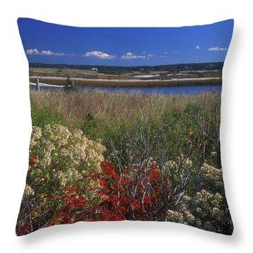 Edgartown Lighthouse Autumn Flowers Throw Pillow by John Burk